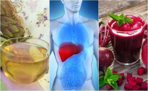 Proteggere il fegato con 5 rimedi naturali
