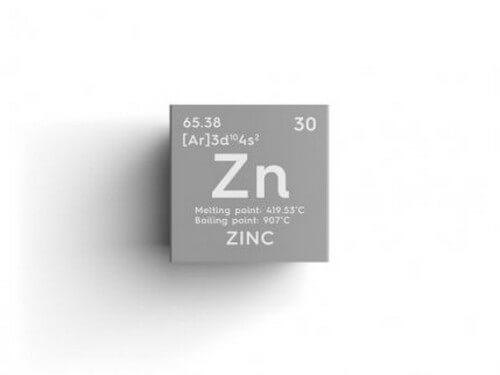 Alimenti ricchi di zinco: quali sono e quali benefici