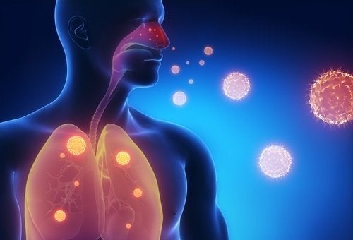 Sintomi influenzali: 3 infusi per alleviarli