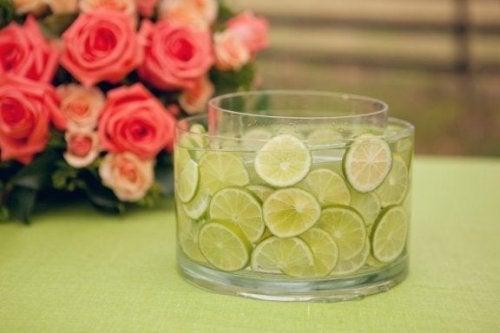 Fette di limone per decorare la tavola