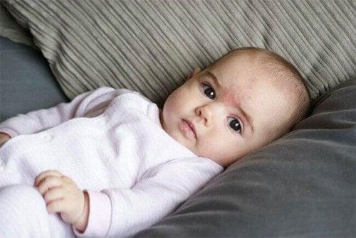 Abbigliamento per il neonato: il body