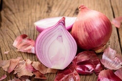 Mangiare cipolla per migliorare la funzione renale
