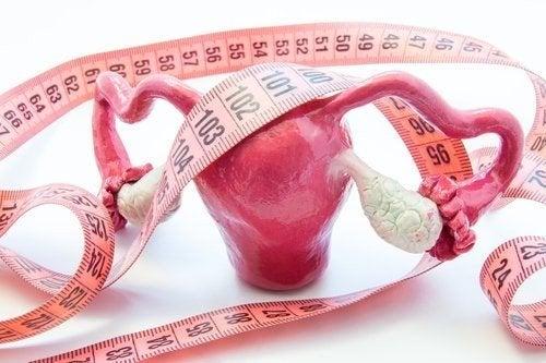 Adenomiosi uterina: sintomi e trattamento