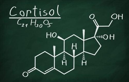 Formula del cortisolo