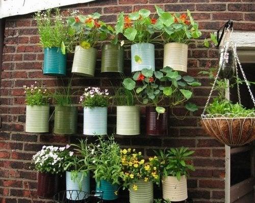 Creare un orto urbano sul balcone, piante in barattoli sospesi
