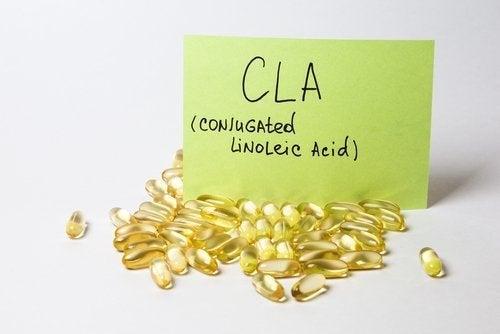 Acido Linoleico Coniugato: gli effetti sul corpo