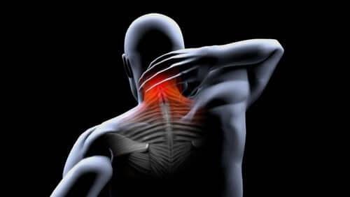 Prevenire le contratture muscolari