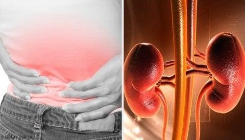 Persona con mani sulla schiena per il dolore ai reni