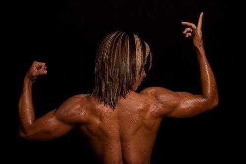 Muscolatura delle schiena