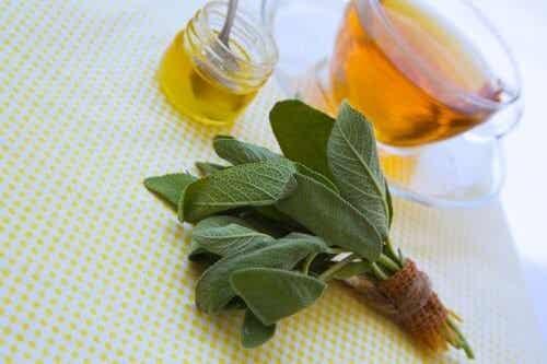 Curare tagli e graffi con salvia e miele