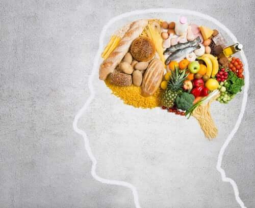 Quali grassi consuma il nostro cervello?
