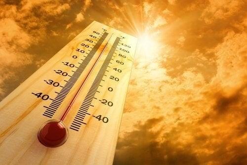 Effetti del caldo sul nostro corpo