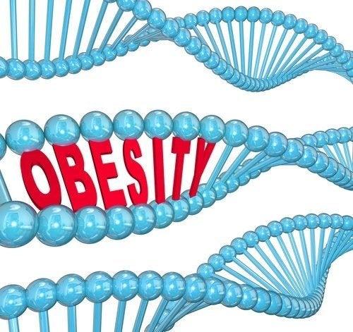 Il gene dell'obesità: cosa dice la scienza