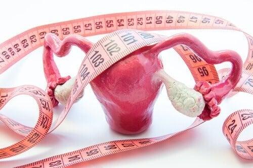 Comparsa dei polipi uterini