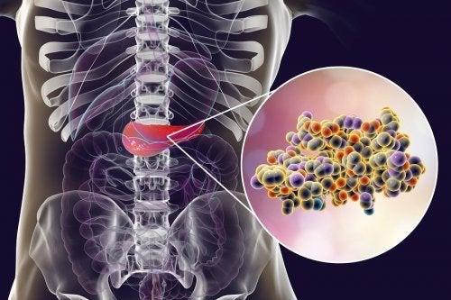 Insulina prodotta dal pancreas