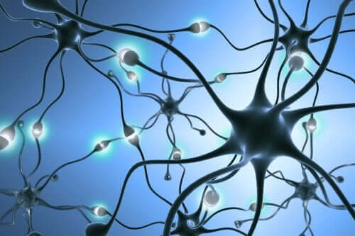La neurogenesi: nascita di nuovi neuroni