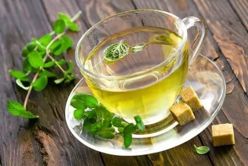 Il tè alla menta tra i migliori alleati della dieta