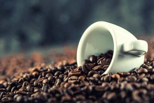 Effetti della caffeina sul cervello