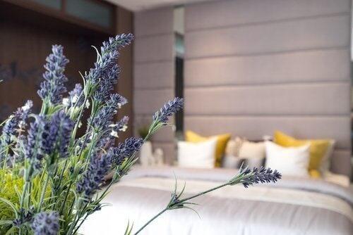 Igiene del sonno: le 10 regole d'oro