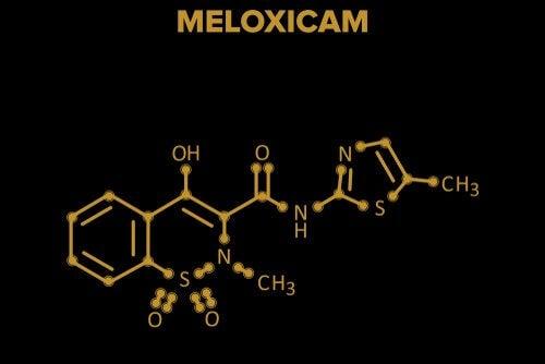 Il meloxicam: tutto quello che c'è da sapere