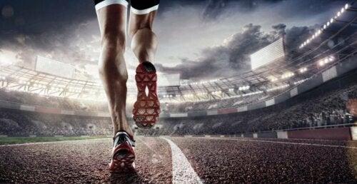 Tendini e legamenti del ginocchio di un atleta