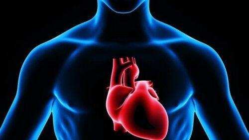 I soffi al cuore
