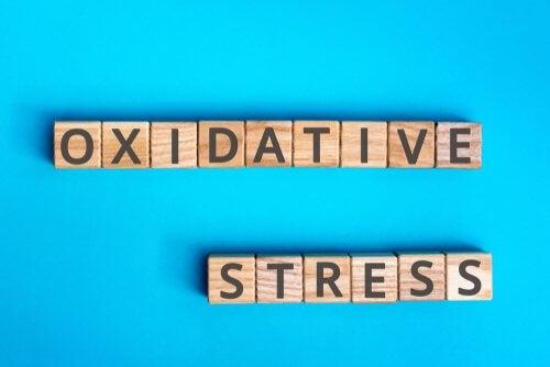 Stress ossidativo: in che cosa consiste?