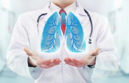 Effetti della respirazione sul cervello
