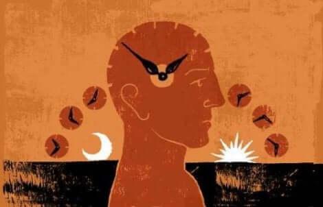 Ritmo circadiano dell'essere umano