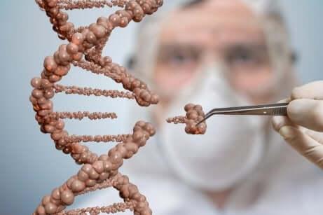 Trattamenti con cellule staminali per sostituire i trapianti