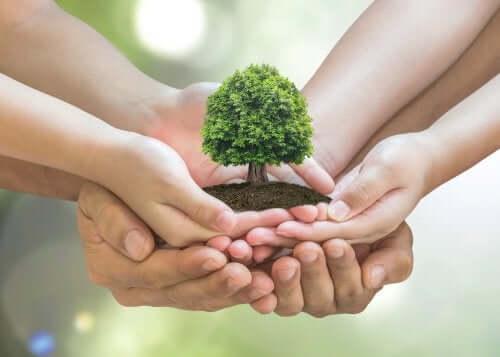 Proteggere l'ambiente da casa propria