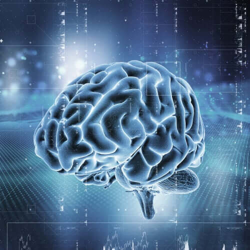 Cervello illuminato a rappresentare la dipendenza da oppioidi