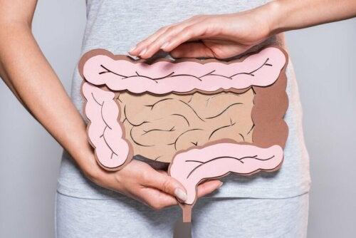 Come prendersi cura della salute intestinale, donna e disegno dell'intestino