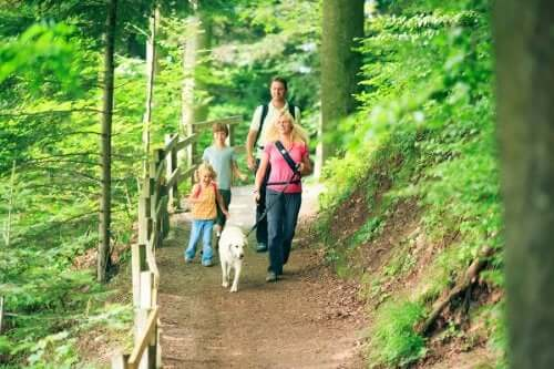 Attività alla aria aperta in autunno e famiglia su sentiero di montagna.