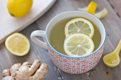Infuso di radice di limone e zenzero