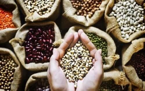 i legumi non possono mancare tra gli alimenti vegani ricchi di calorie