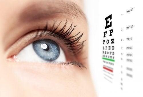 Trapianto della cornea e recupero post-operatorio