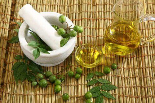 óleos vegetais neem