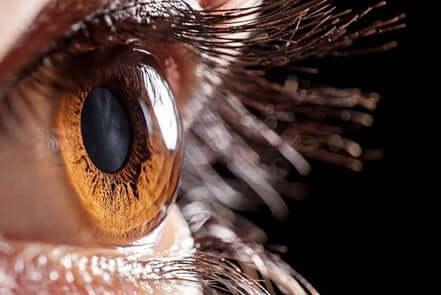 Primo piano dell'occhio