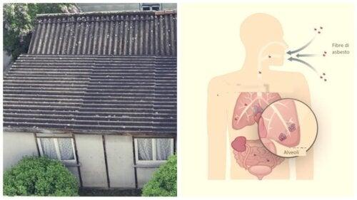 Fibre di asbesto o amianto