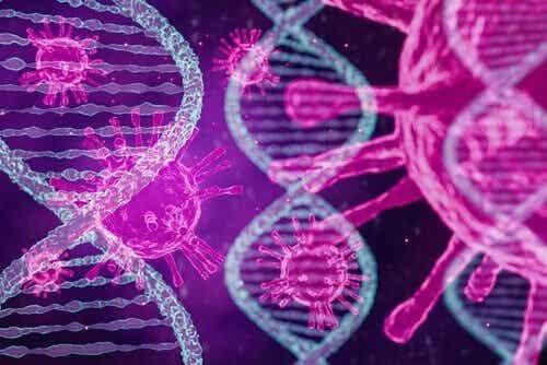 Tre tipi di Coronavirus secondo le ultime ricerche
