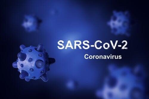 Origine del Coronavirus e perché è impossibile eradicarlo