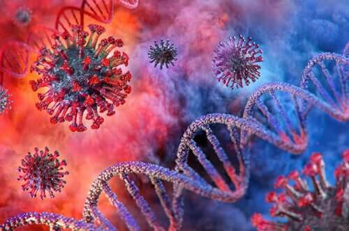 Virus del COVID-19