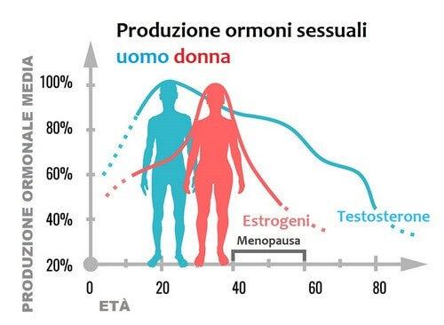 Ormoni sessuali: che funzione hanno?