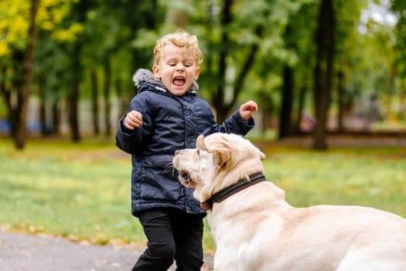Bambino che ha paura del cane