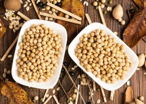Proteine della soia: fanno bene alla salute?