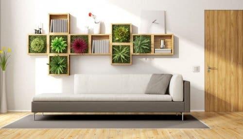 Arredare il soggiorno con piante da interni