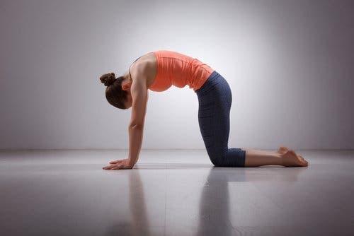 Donna esegue lo stretching della schiena per prevenire e alleviare il dolore lombare