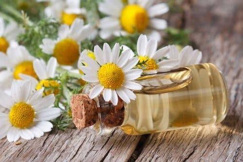 L'olio essenziale di camomilla è una soluzione antinfiammatoria