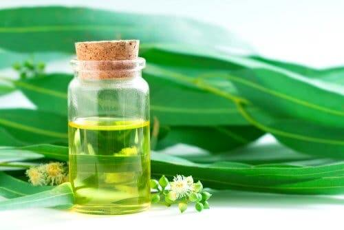 Barattolo con olio essenziale